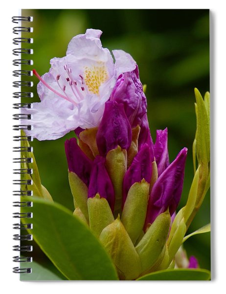Unveiling Of Inner Self Spiral Notebook