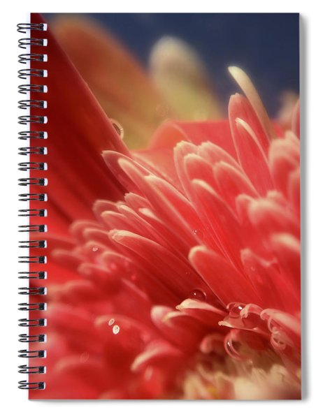 Up Tangerine Spiral Notebook