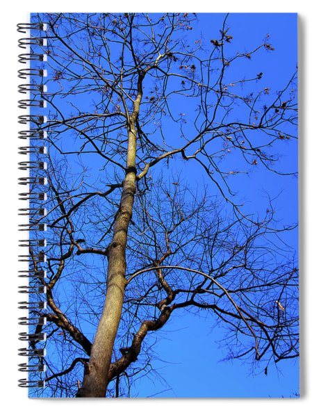 Up To The Blue Sky Spiral Notebook