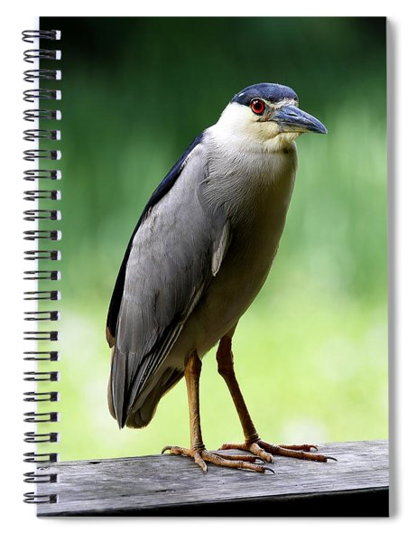 Upstanding Heron Spiral Notebook