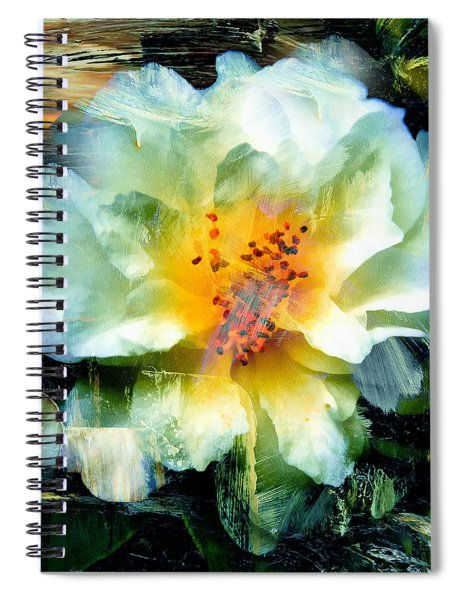 Urban Beauty Spiral Notebook