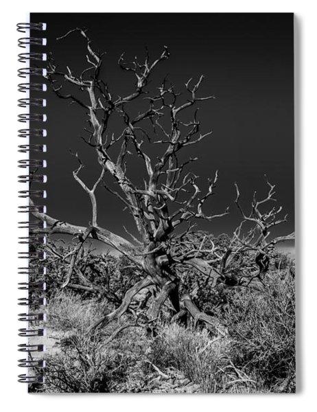Utah Juniper In Black And White Spiral Notebook