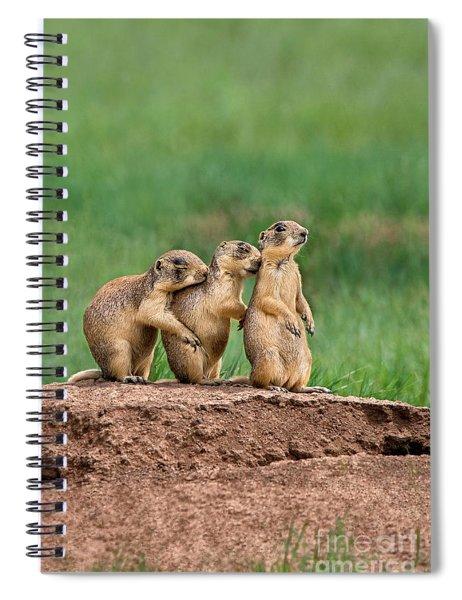 Utah Prairie Dogs Cynomys Parvidens Wild Utah Spiral Notebook