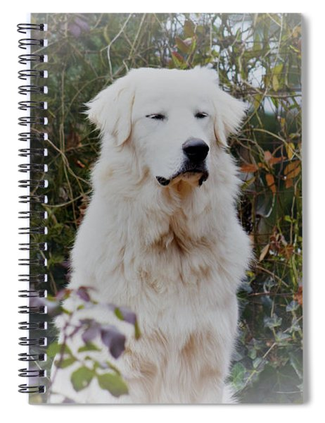 Spiral Notebook featuring the photograph Utopia by Patti Whitten