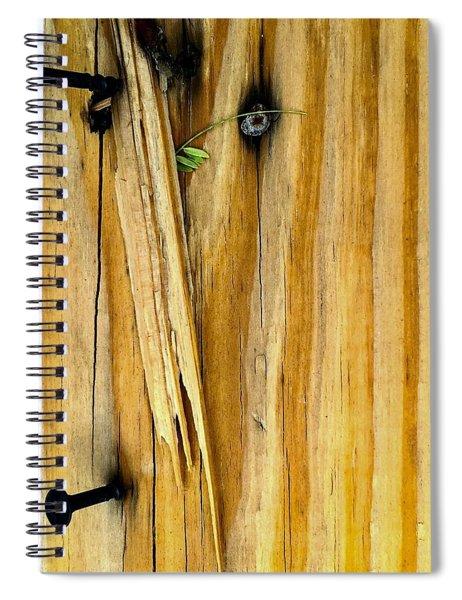 V Back 2 Spiral Notebook
