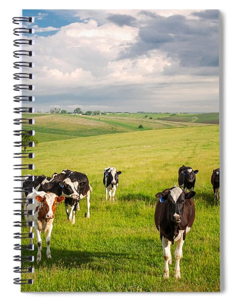Valley Of The Cows Spiral Notebook