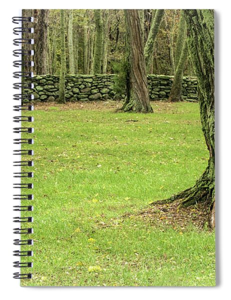 Venerable Trees And A Stone Wall Spiral Notebook