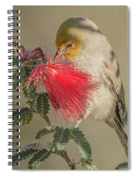Verdin 1644-111417-1cr Spiral Notebook