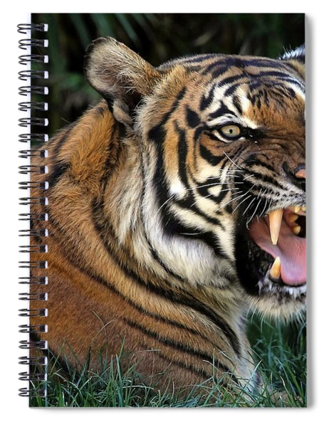 Very Cranky Today Spiral Notebook