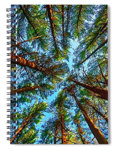 Veterans Acres Park Pine Grove Spiral Notebook