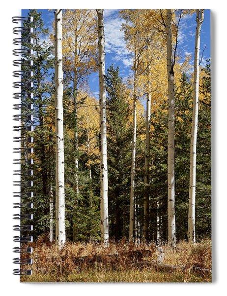 Vibrancy Of Autumn II Spiral Notebook