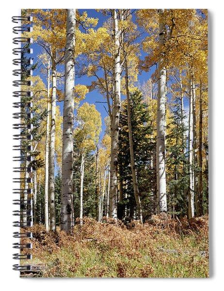 Vibrancy Of Autumn Iv Spiral Notebook