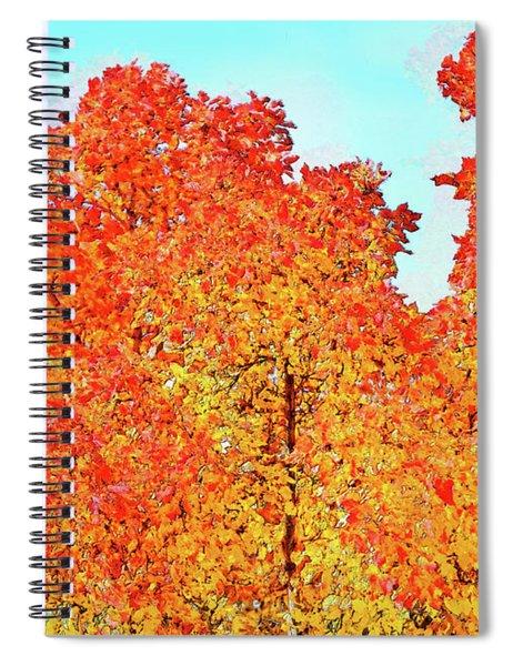Vibrant Autum Trees Spiral Notebook
