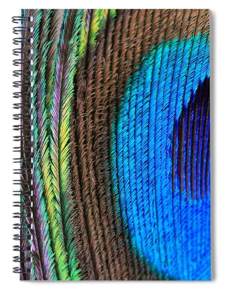 Vibrant Blue Feather Spiral Notebook