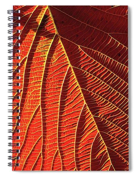 Vibrant Viburnum Spiral Notebook