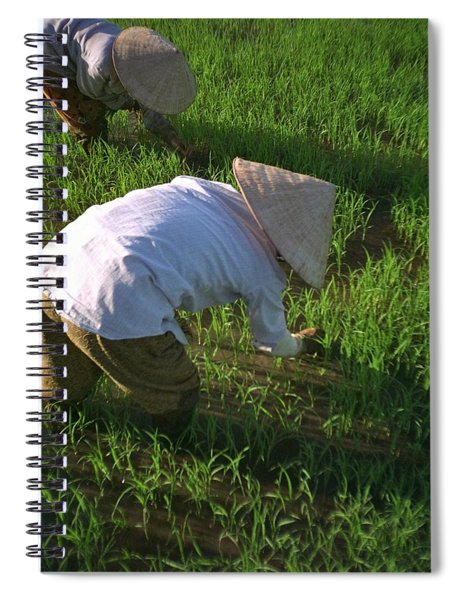 Spiral Notebook featuring the photograph Vietnam Paddy Fields by Travel Pics