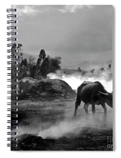 Vietnamese Water Buffalo  Spiral Notebook