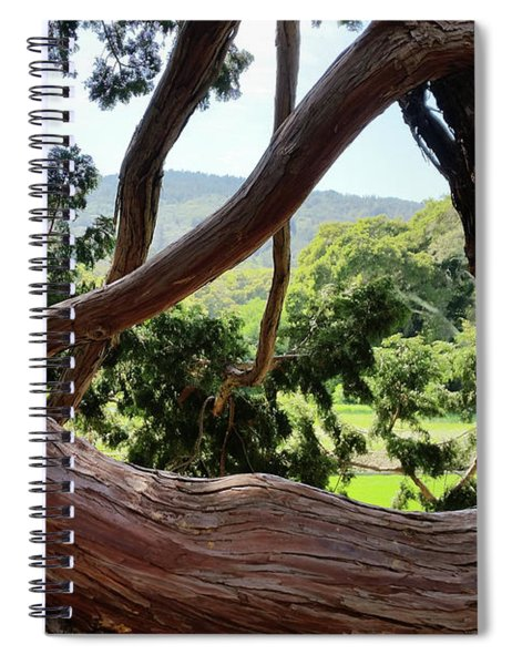 View Through The Tree Spiral Notebook