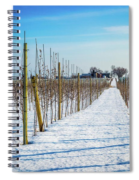 Vinyard On Down Road  Spiral Notebook
