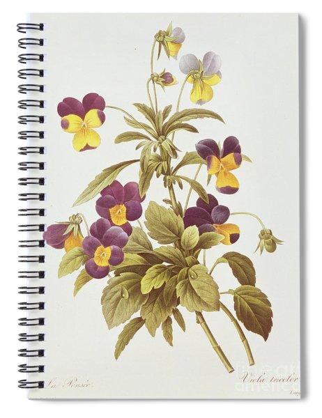 Viola Tricolour  Spiral Notebook