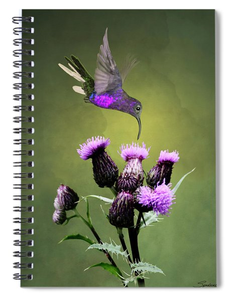 Violet Sabrewing Hummingbird And Thistle Spiral Notebook
