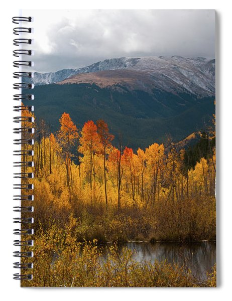 Vivid Autumn Aspen And Mountain Landscape Spiral Notebook