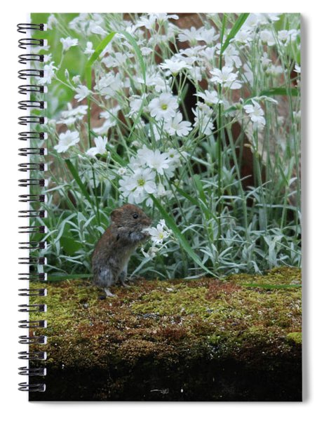 Field Vole  And A  Feast Of Flowers Spiral Notebook