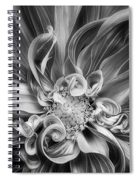 Vortex Spiral Notebook