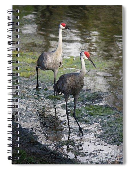 Wading Sandhills Spiral Notebook