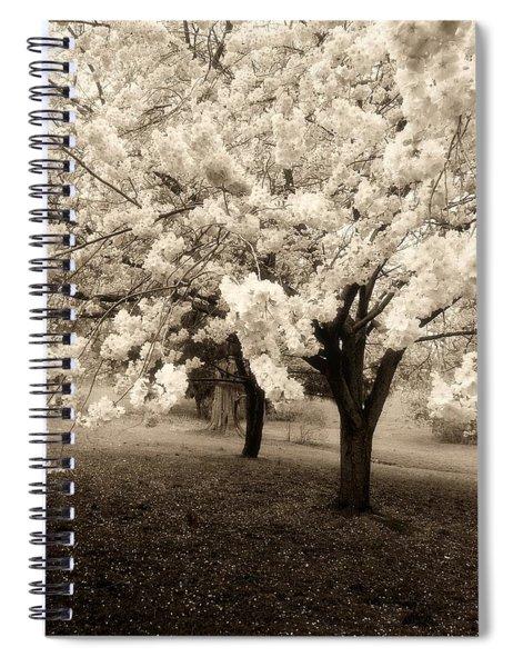 Waiting For Sunday - Holmdel Park Spiral Notebook