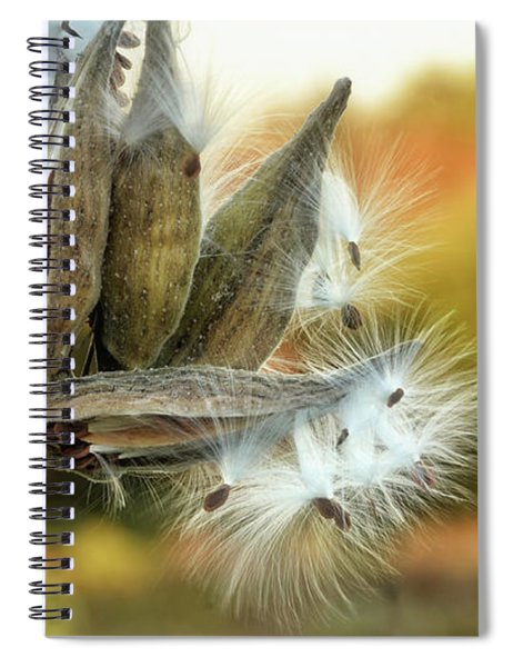 Spiral Notebook featuring the photograph Waiting On The Wind by Andrea Platt