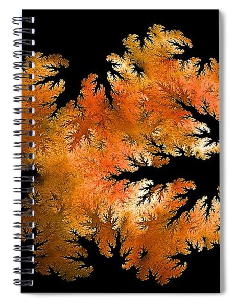 Waking In Mandelbrot Forest-2 Spiral Notebook