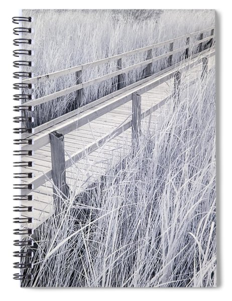 Walk Through The Marsh Spiral Notebook