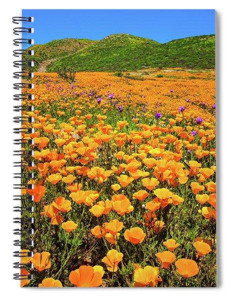 Walker Canyon Wildflowers Spiral Notebook