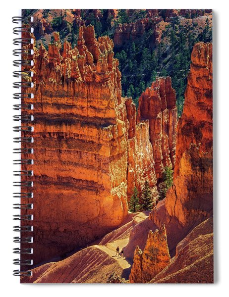 Walking Among Giants Spiral Notebook