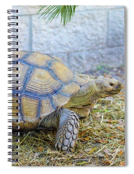 Walking Turtle Spiral Notebook