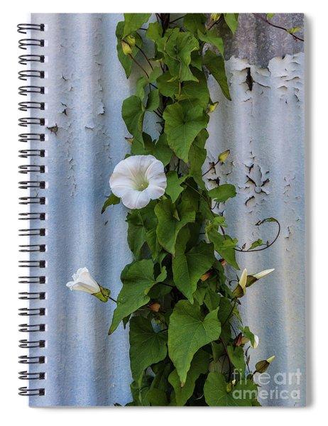 Wall Flower Spiral Notebook