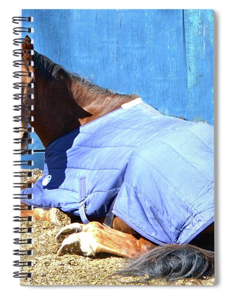 Warm Winter Day At The Horse Barn Spiral Notebook