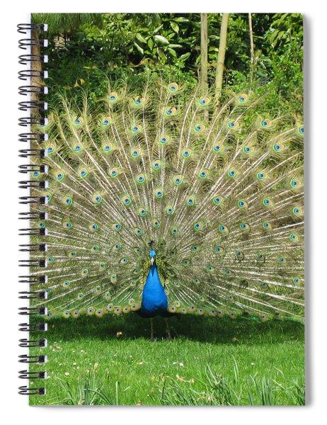 Warwick Castle Peackock Spiral Notebook
