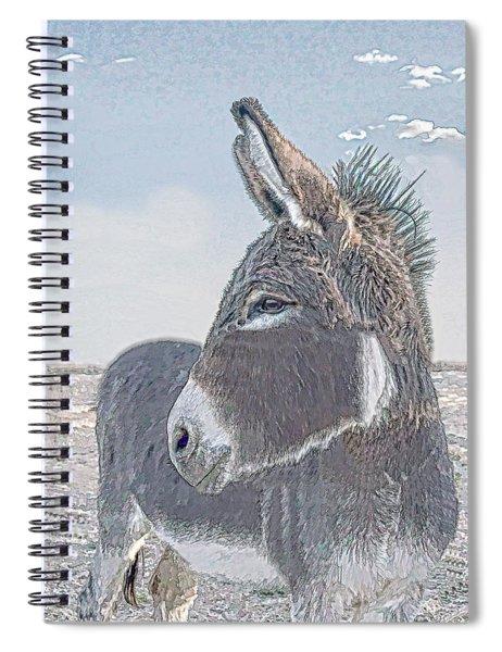Watchful Gaze Spiral Notebook