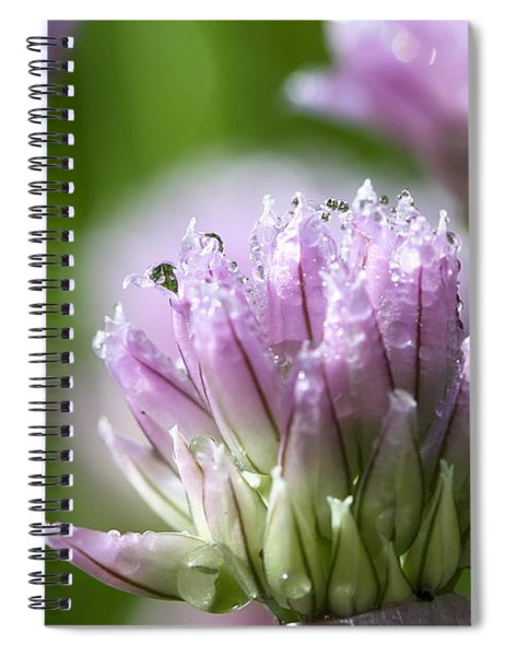Water Droplets On Chives Flowers Spiral Notebook