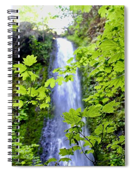 Water Fall In The Trees Spiral Notebook