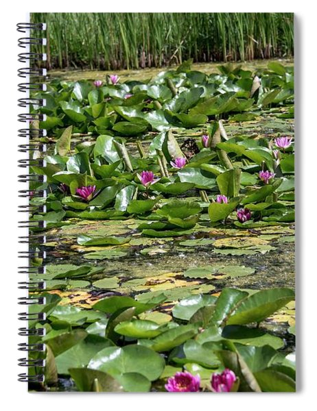 Water Lilies At Giverny - 2 Spiral Notebook