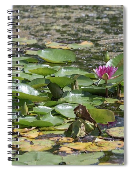 Water Lilies At Giverny Spiral Notebook