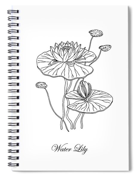 Water Lily Flower Botanical Drawing  Spiral Notebook
