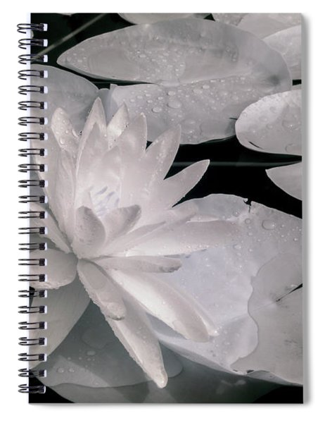 Water Lily In Infrared Spiral Notebook