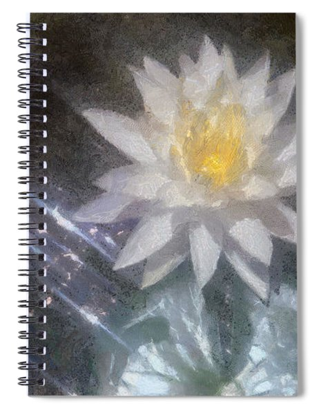 Water Lily In Sunlight Spiral Notebook