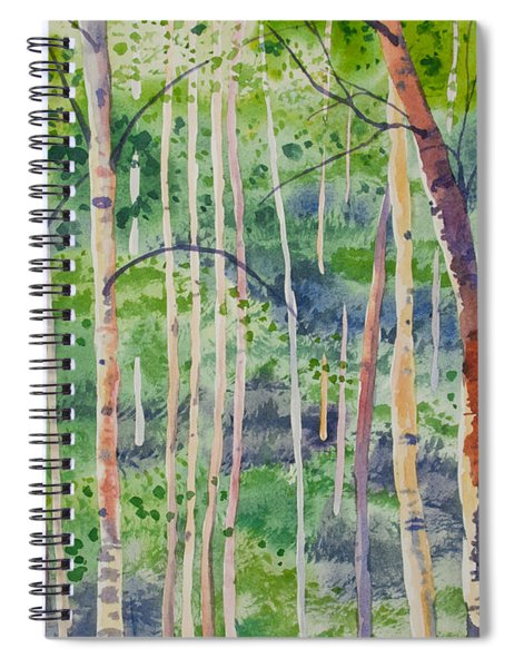 Watercolor - Magical Aspen Forest After A Spring Rain Spiral Notebook