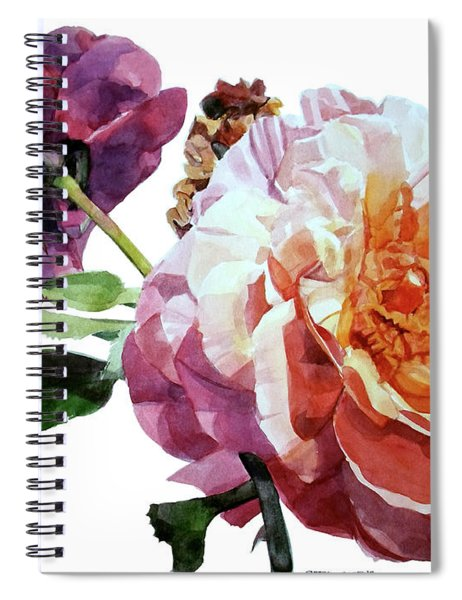 Watercolor Of Two Roses In Pink And Violet On One Stem That  I Dedicate To Jacques Brel Spiral Notebook