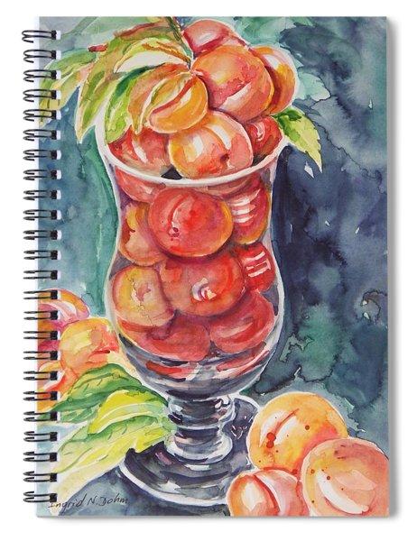 Watercolor Series No. 214 Spiral Notebook